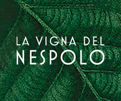 LA VIGNA DEL NESPOLO | Shop